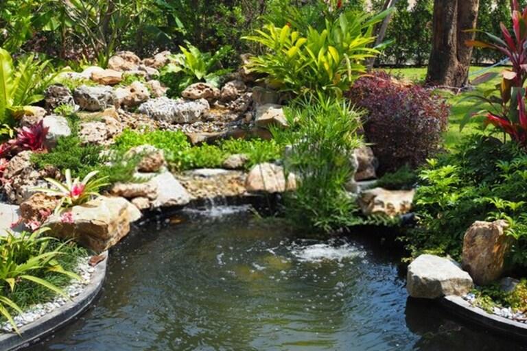 How Do I Make My Garden Pond Look Natural